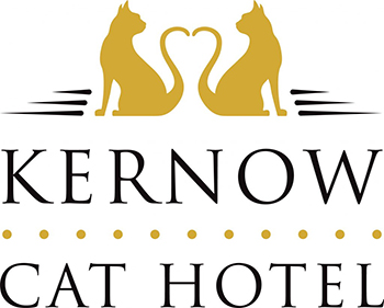 Kernow Cat Hotel